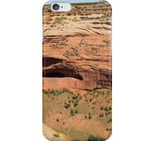 In The Shelter Of The Wind I Will Build My Home iPhone Case/Skin