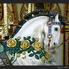 Carousel Horse by Judylee