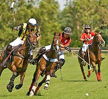 Polo in Kentucky by Chuck St. John