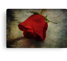 Each Love Deserves A Fine Flower Like The Red Rose Canvas Print