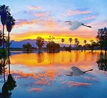 Egret's Sunrise by Marvin Collins
