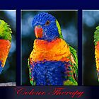 Colour Therapy by Wendy  Slee