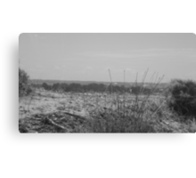 Sand and Steel  Canvas Print