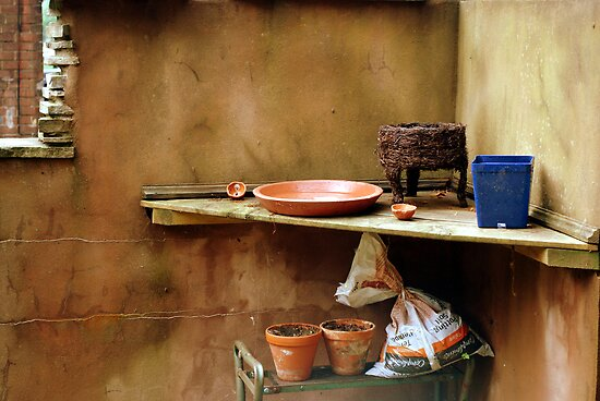 Garden Shelf by Robin Webster