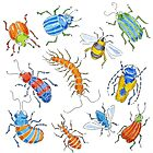 Bright bugs by Kate Garrett