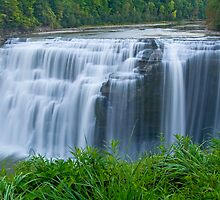 Middle Falls, Letchworth State Park, New York by LarryGambon