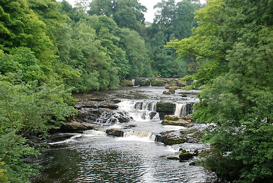 Aysgarth Falls by dougie1