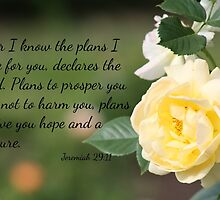 Yellow Rose with Jeremiah 29:11 by AngelaBishop