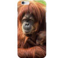 Sumatran orangutan mother with infant In a zoo iPhone Case/Skin