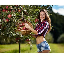 Beautiful woman picking apples Photographic Print