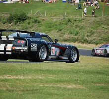 Viper GT2 at LimeRock by Josh Johnston