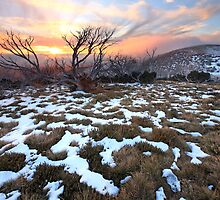 Mt Hotham Early Winter Sunset, Australia by Michael Boniwell