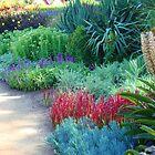 Botanical by KerrySlade