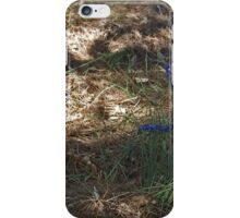 Hovea in the Shadow iPhone Case/Skin