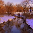 Winter Creek by Mike Griffiths