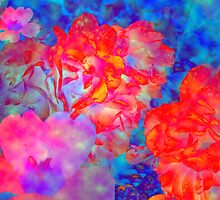 Roses with special effects by happyphotos