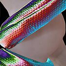 Man v's The Rainbow Serpent by TerraChild