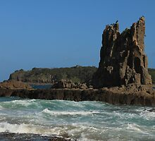 Cathedral Rocks by DevineNature