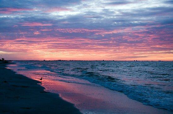 Daybreak at Sanibel Island by Bonnie T.  Barry