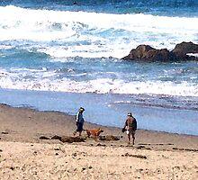 walking on beach by littlefrog7