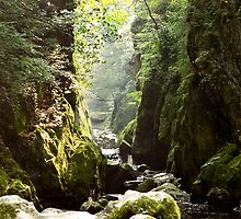 fairy glen (north wales) by Raymond Kerr
