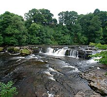 Aysgarth falls, the top end! by dougie1