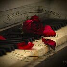 Sonata in Roses by Chris Armytage™