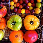 Season Harvest by Ray4cam