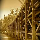 Red Gum Wharf by Penny Smith