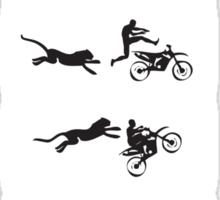 Cheetah Run Sticker