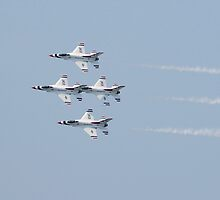Thunderbirds by Laura Jean Taft