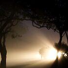 fog lit night by Jason Platt