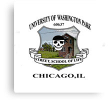 Washington Park Chicago University Canvas Print