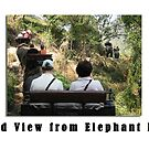 Elephant Series #05 Carrying Tourists by Keith Richardson