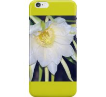 Red Dragon-Fruit Flower Bloom iPhone Case/Skin