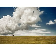 Lonely in the field Photographic Print