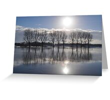 Icy reflection on the river Rhine Greeting Card
