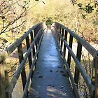 Bridge by KatieBird