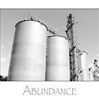 abundance by James Edward Olson