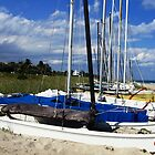 Delray Sailboats by DeeZ (D L Honeycutt)