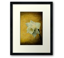 Pure as springtime Framed Print