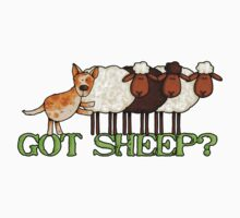 got sheep? by Corrie Kuipers