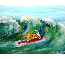 Surfin' Surprise Photographic Print