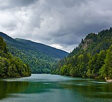 Lake Petrimanu in Romania by naturalis