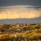 Sunlit cloud front, Sturt NP by Kevin McGennan