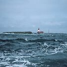 Grace Darling Lighthouse 198405280013m by Fred Mitchell