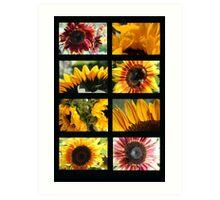 Sunflower Collage 2 Art Print