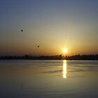 Sunset on the Nile by NATALIE FLETCHER