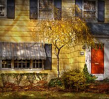 The little yellow house by Mike  Savad