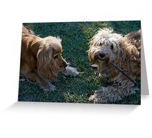 Could I Have the Stick, PLEASE? Greeting Card